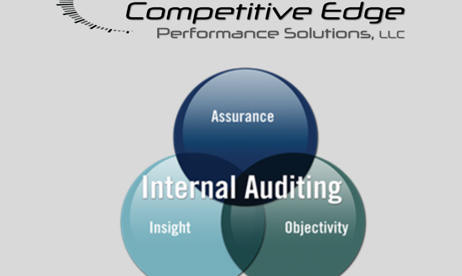 internal auditing competitive edge performance solutions