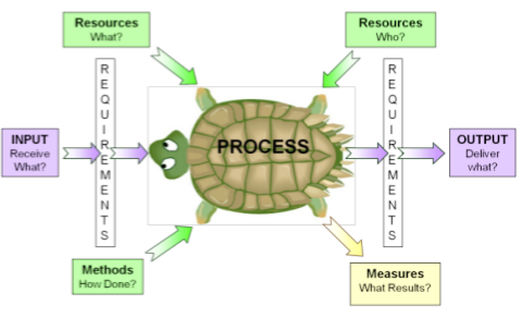 How do you use a Turtle Diagram?